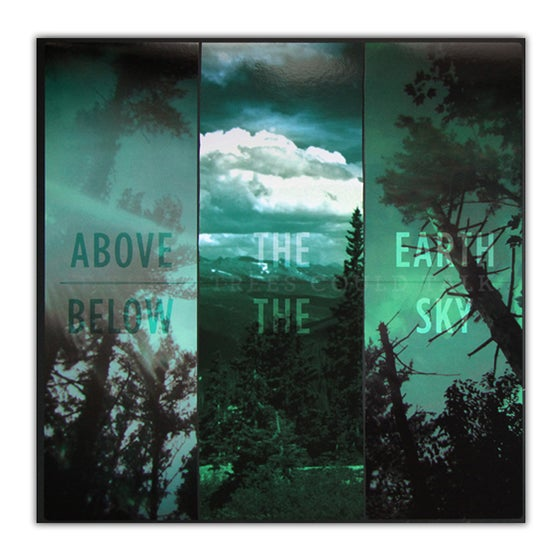 """Image of 12"""" If These Trees Could Talk - Above the Earth, Below the Sky"""