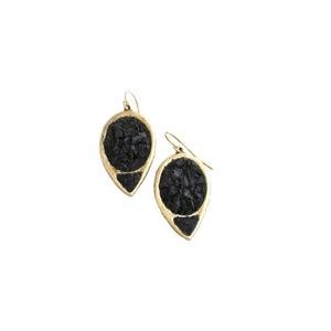 Image of True North Earrings