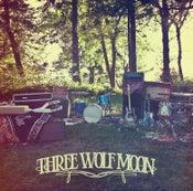 Image of Three Wolf Moon - CD
