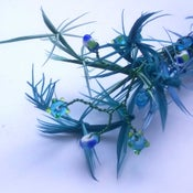 Image of Blues Feather Fireworks long Frou Frou (Fascinator)