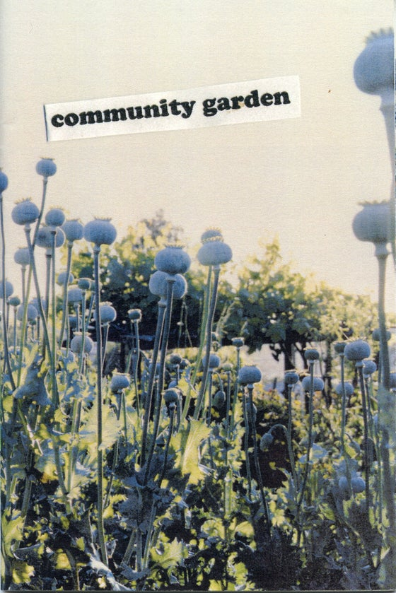 Image of community garden
