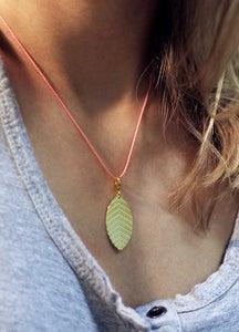little leaf_nicotiana tabacum_grüngold