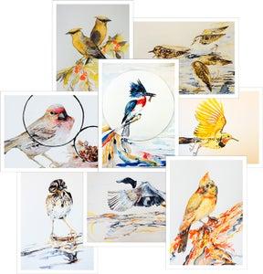 Image of Birds by Nancy Tomczak