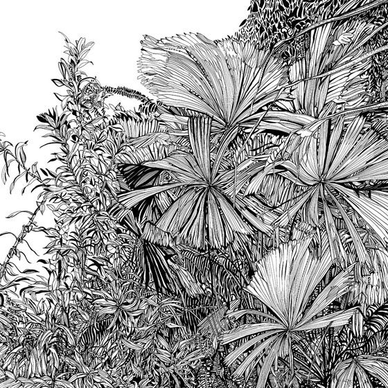 Image of Botanical Plants screen print