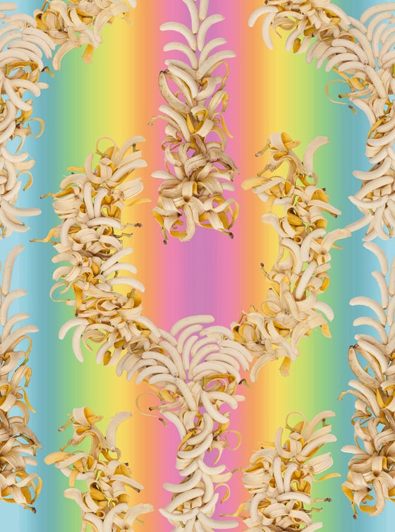 Image of Fallen Fruit, Peeled Banana Wallpaper (Rainbow Background)