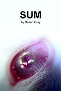 Image of Sum