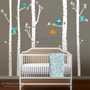 Image of Birch Trees with Owls