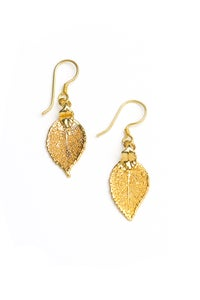 Image of Real Small Evergreen Earrings Preserved in Precious Metals