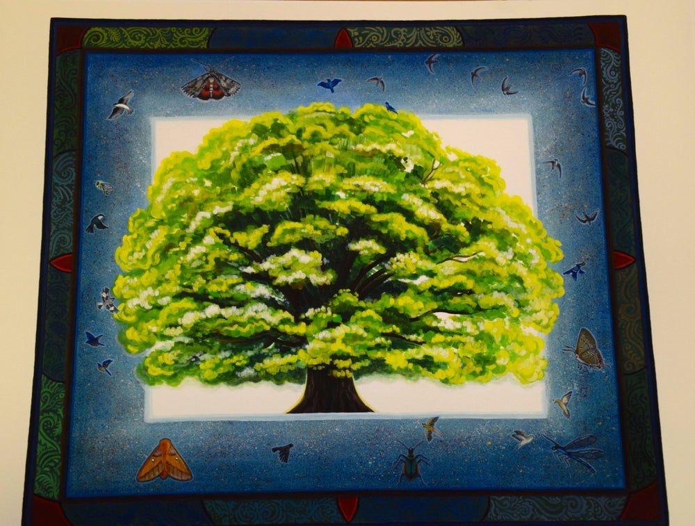 """Image of Limited Edition """"Chatham Oak"""" Print"""