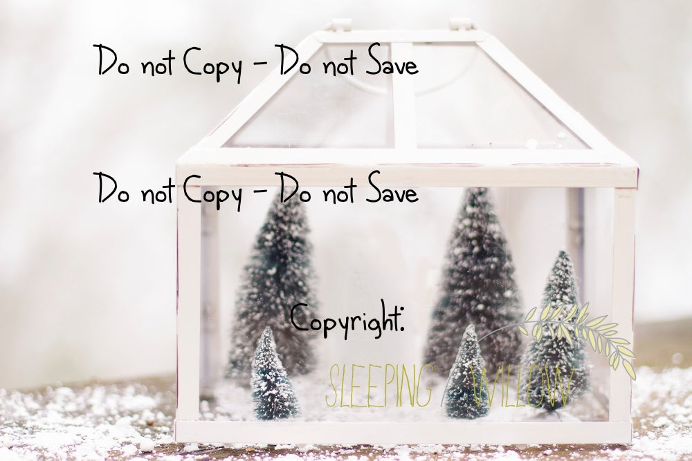 Image of Christmas Tree Farm - Digital Template