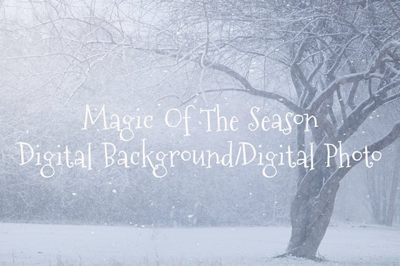 Image of Magic Of The Season Digital Background/Digital Photo