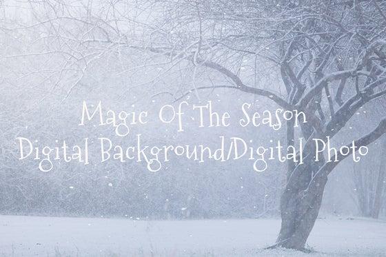 Image of Magic Of The Season Digital Background/Digital Photo