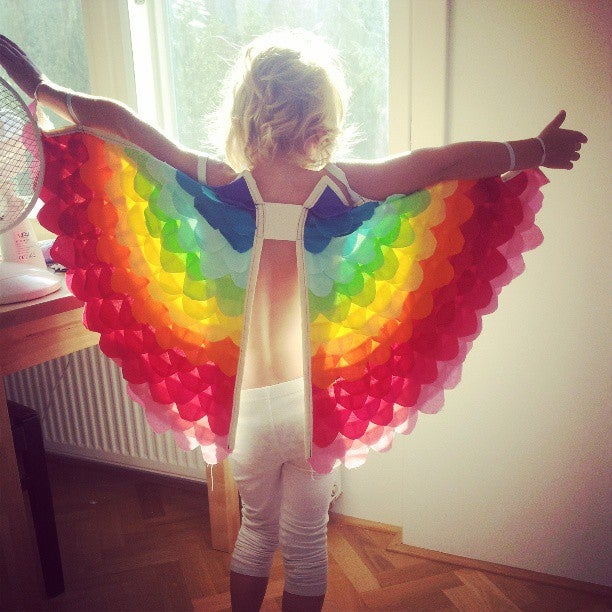 Image of Reverse Rainbow Wings