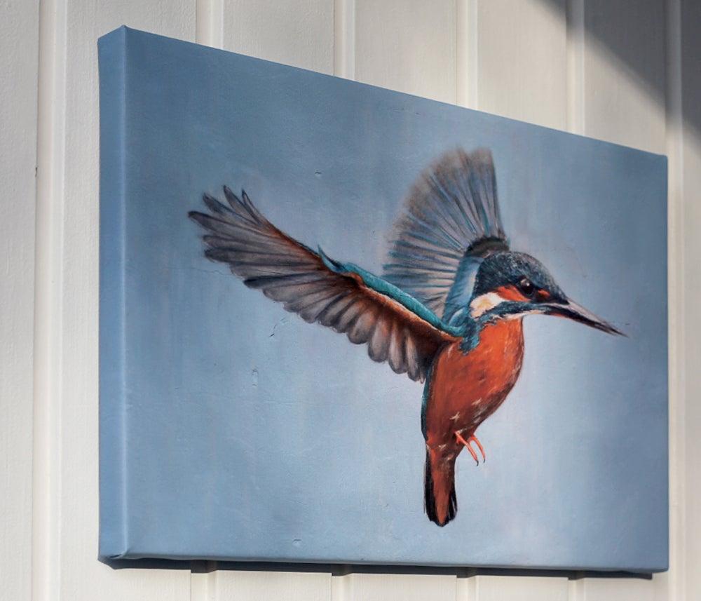 Image of Kingfisher - Eisvogel