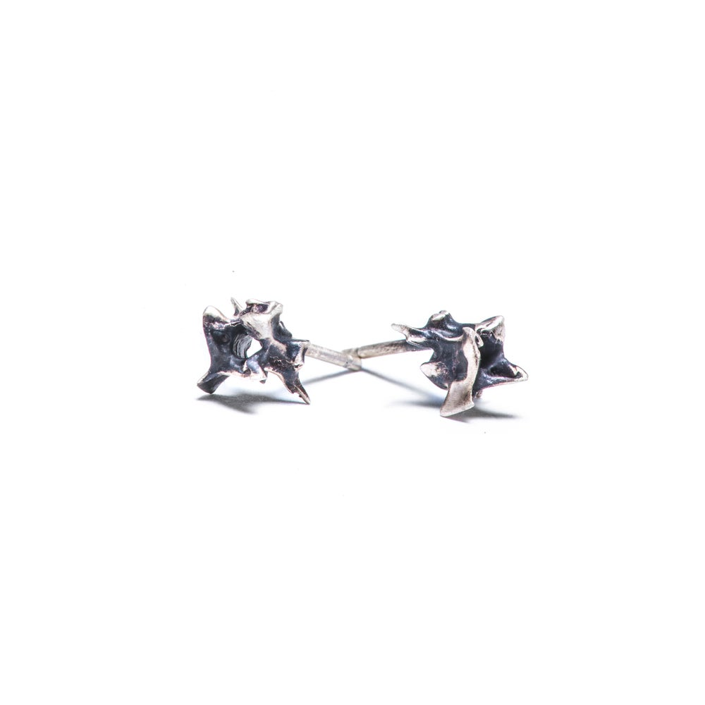 Image of tiny vertebrae stud earring (E20)