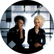 "Image of THE FROZEN AUTUMN 12"" picture vinyl ""LIE IN WAIT"""