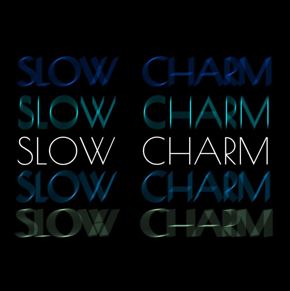 Image of SLOW CHARM Vinyl EP
