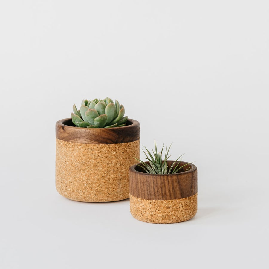 Image of Walnut + Cork Bowls
