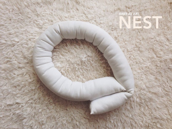 Image of Baby as Art NEST