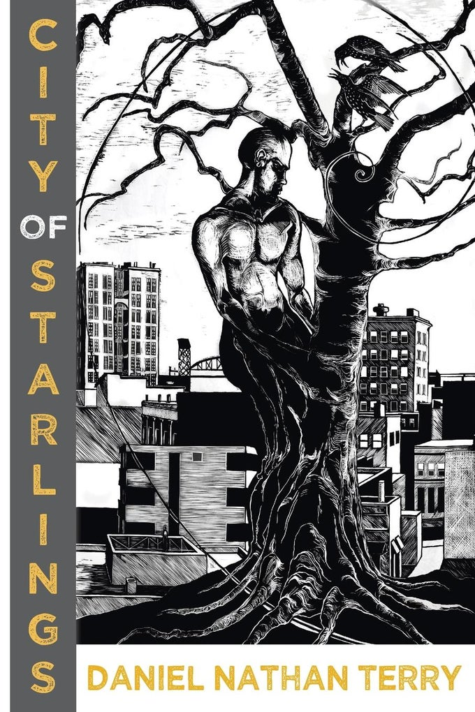 Image of ALA Over the Rainbow Title! City of Starlings by Daniel Nathan Terry
