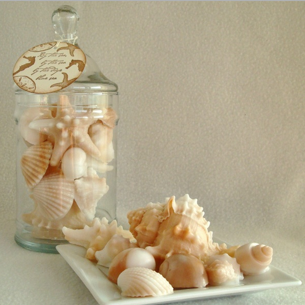 Image of Apothecary Jar of Shells