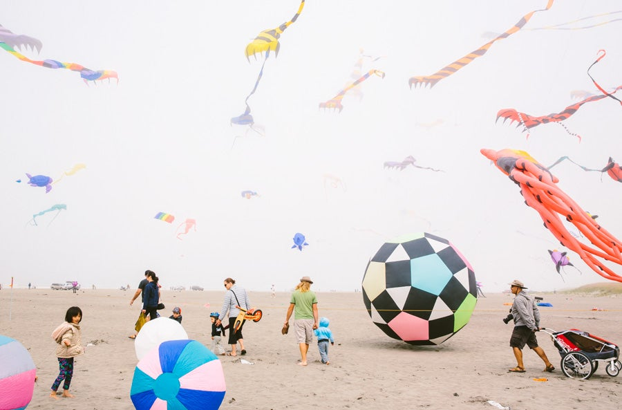 Image of Kite Festival
