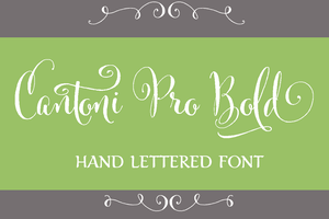 Image of Cantoni Pro Bold Hand Lettered Font