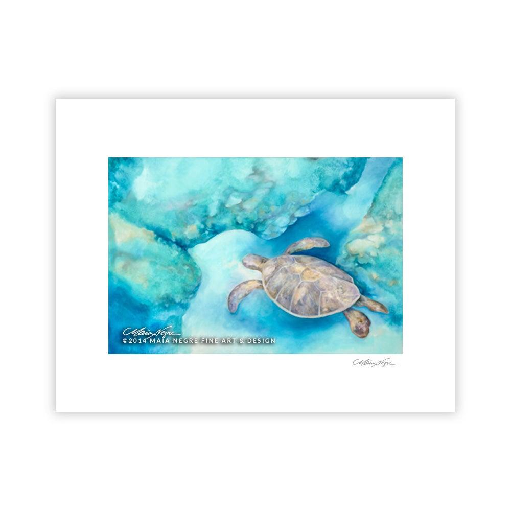 Image of Sea Turtle, Archival Paper Print