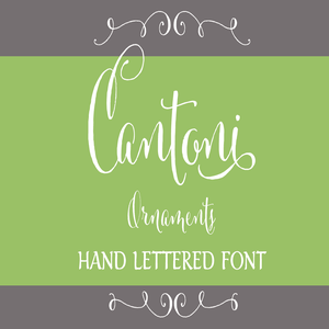 Image of Cantoni Ornaments Hand Lettered Font