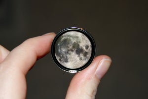 "Image of Moon Plugs (sizes 2g-2"")"