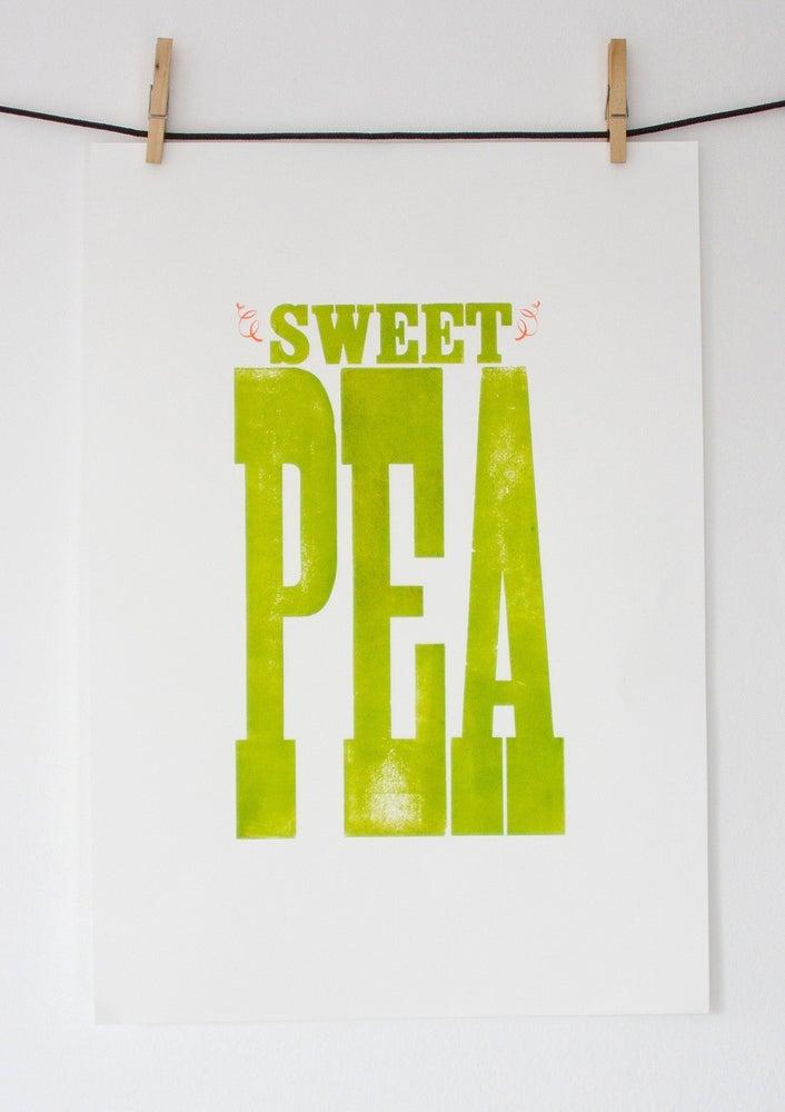 Image of Sweet Pea