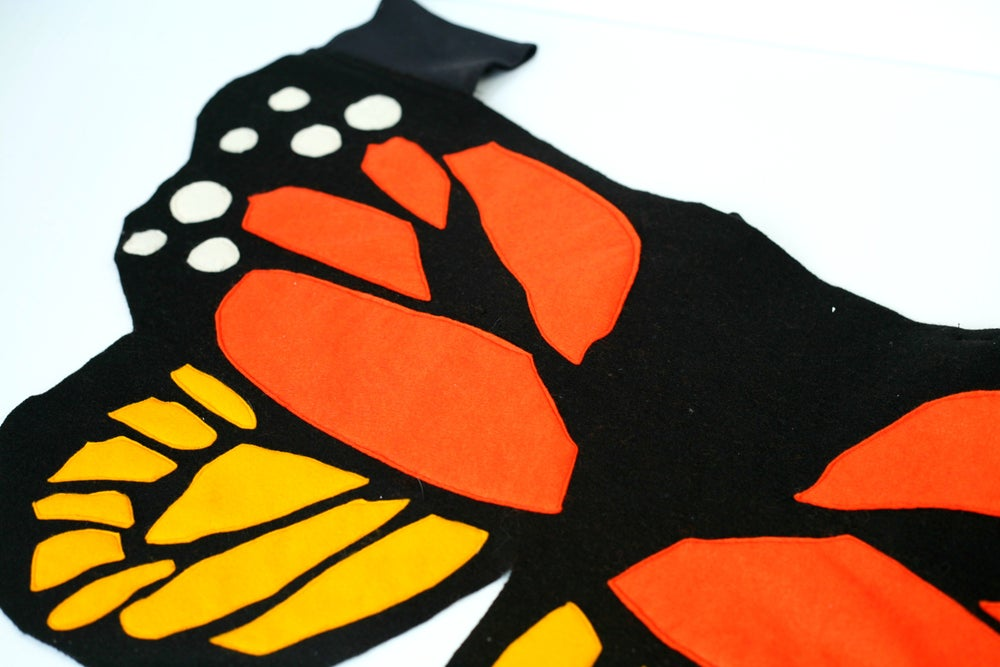 Image of Monarch Wings