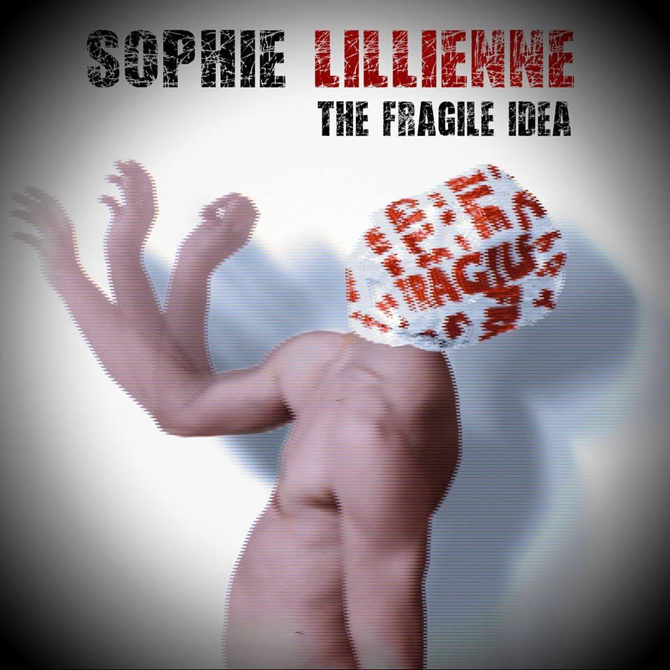 Image of The Fragile Idea