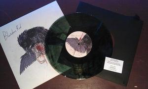 Image of 10 inch vinyl Beak to Beak (EP,2015)