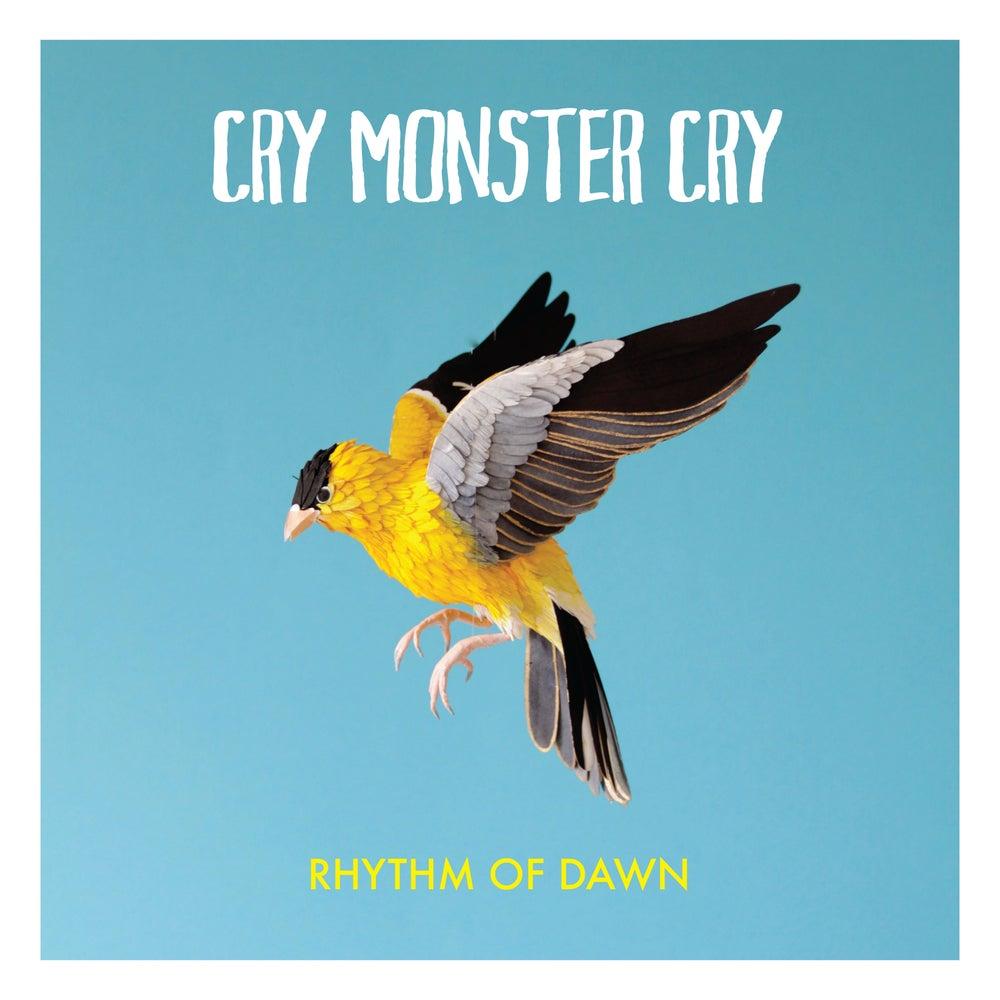 Image of Rhythm Of Dawn - Vinyl & Digital Download