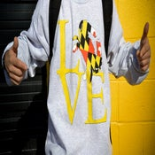 Image of  LOVE Crew Neck Sweatshirt