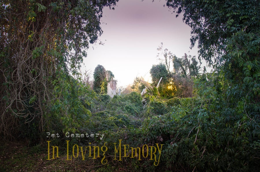 Image of 'Pet Cemetery...In loving Memory' Doral Publishing (2015)