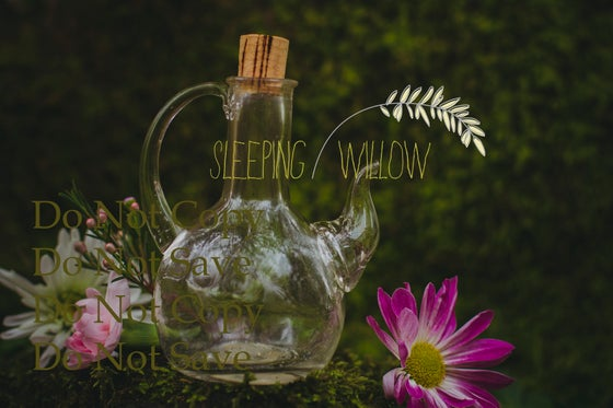 Image of Digital Spring Flowers Fairy Layered Template -Sleeping Willow Template