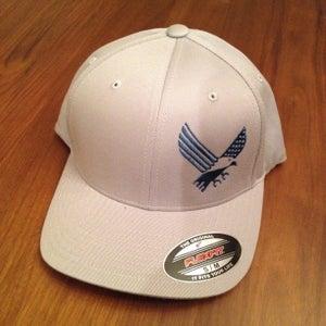 Image of AO Gray Flexfit Hat