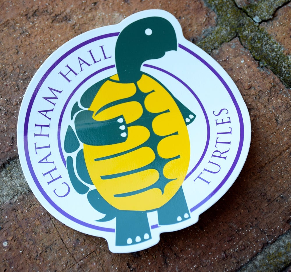 Image of Standing Turtle Bumper Sticker