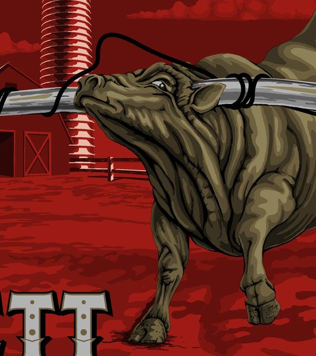 Image of Avett Bros. Dallas 15 Variant