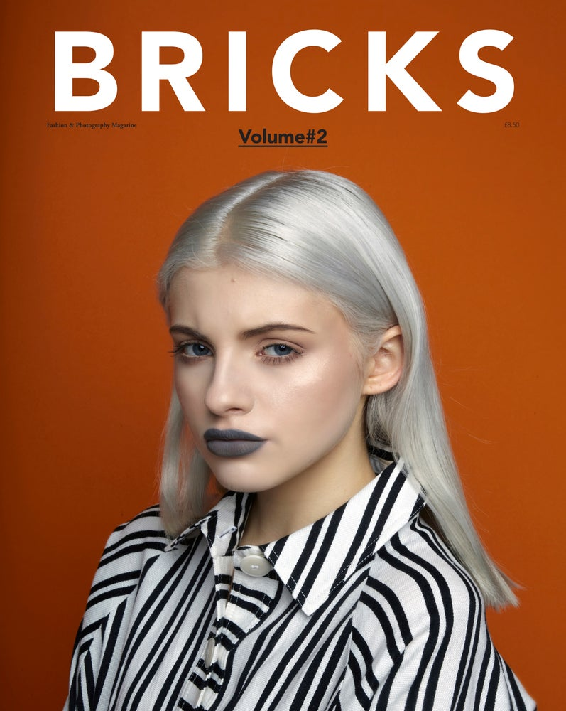 Image of Bricks Magazine - Volume 2