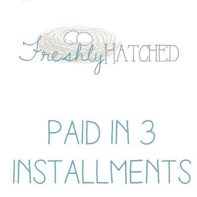 Image of Freshly Hatched Workshop 3 installments