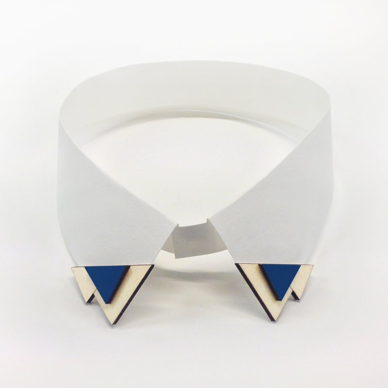 Image of collar clips 001