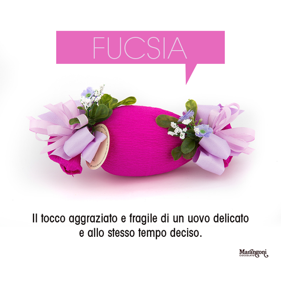 Image of Fucsia