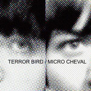 "Image of TERROR BIRD / MICRO CHEVAL - 12"" Split LP"