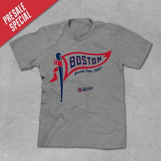 Image of Boston Flag