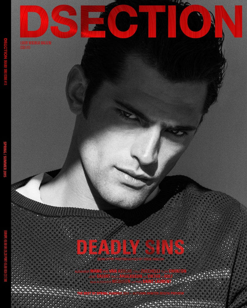 Image of DSECTION #13 // DEADLY SINS // COVER 1