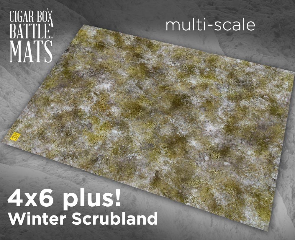 Image of Winter Scrubland -- 4'x6' plus -- #191