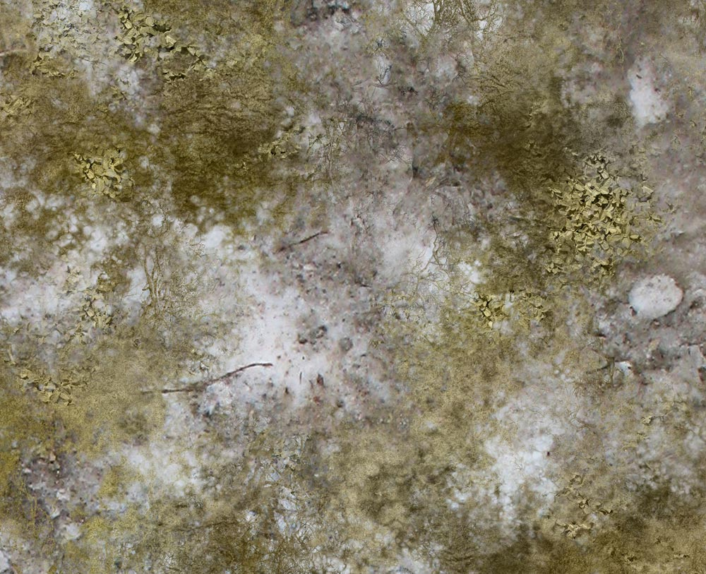 Image of Winter Scrubland -- 4'x6' plus -- #191